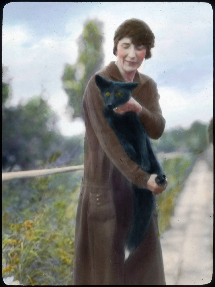 Portrait - Photo - Woman with Fox